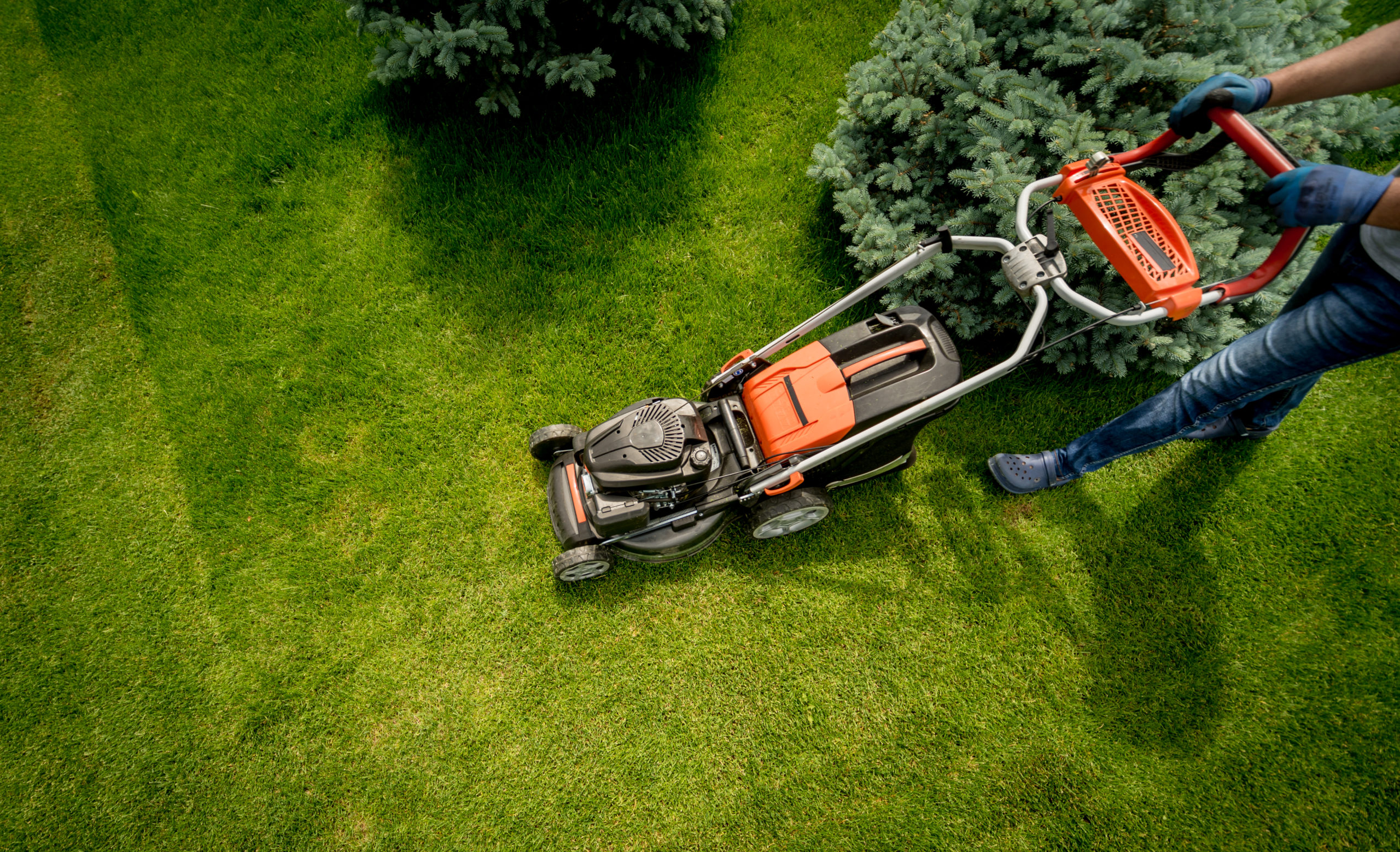 How to Mow a Lawn Professionally? | Grass Cutting Techniques